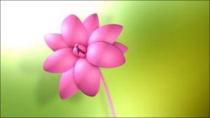 آموزش فارسی مدلسازی گل در نرم افزار Cinema 4d
