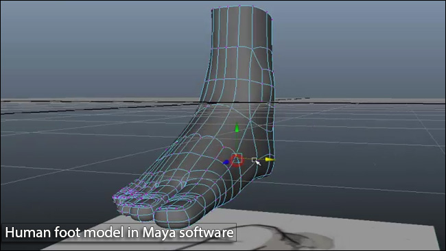 آموزش ساخت پا در نرم افزار مایا